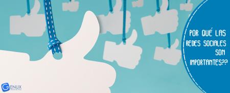por que las redes sociales son importantesminitura