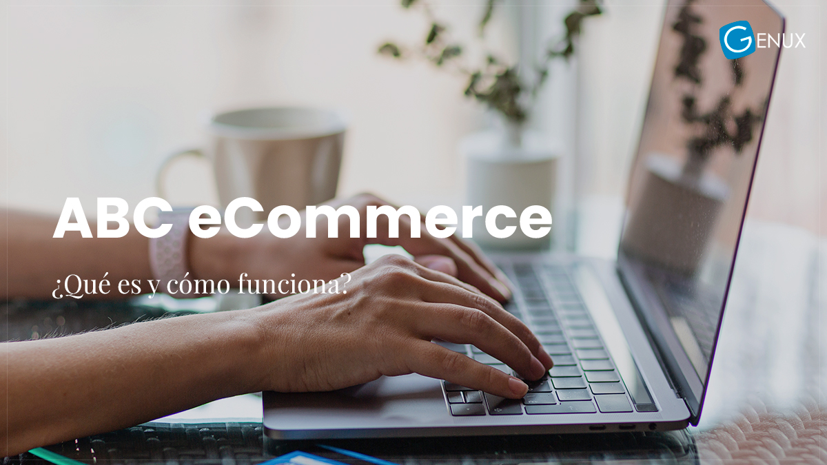 eCommerce ¿Qué es y cómo funciona?
